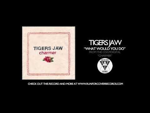 Tigers Jaw -
