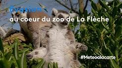 Évasion : au cœur du zoo de La Flèche