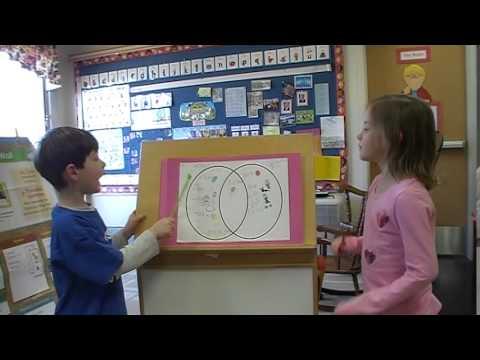 Kindergarten I Like Venn Diagrams Youtube