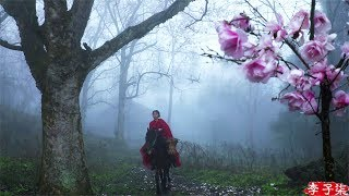 Riding a Horse to Find Magnolia Liliflora Blossoms for You 遛马寻花,摘下开得正盛的辛夷给喜欢的你们|Liziqi Channel