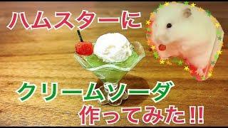 飼い主はクリームソーダを食べたことがありません・・・(´・ω・`) 作り...