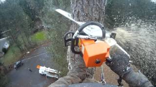 Repeat youtube video Arborist August Hunicke speed line technique.