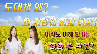 아직도 이해 못하는 한국문화  왜  저렇게 까지 하지?…