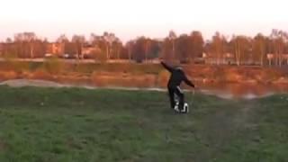Мотоскейт, прикольное видео как мотоскейт пропахивает чернозем