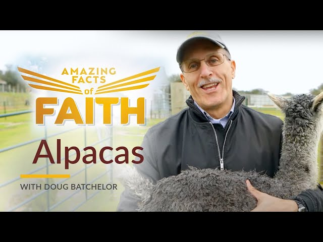 Amazing Facts of Faith: