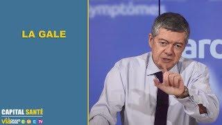 La gale - Jean Claude Durousseaud