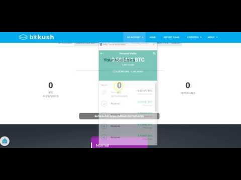 bitcoins-brain-vs-bitkush