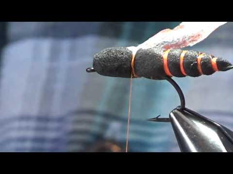 Fly Fish Food - Project Cicada
