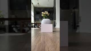 Home Pod mini