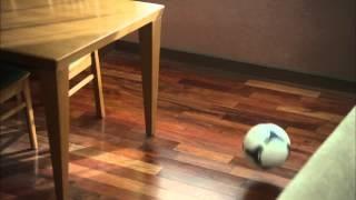 サッカー日本代表の香川真司選手(英マンチェスターU)が、21日から放送...