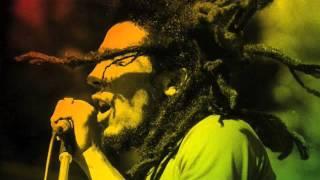 """Positive Vibration"" (Dub Cover) by Avenida Soul"