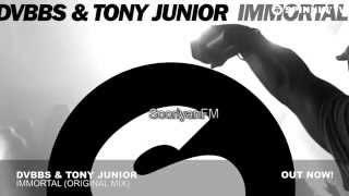 ... the original is composed by dvbbs & tony junior. track - immortal