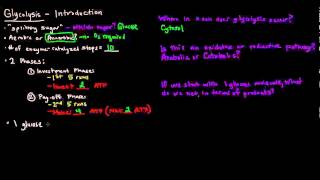 Glycolysis (Part 1 of 3) - Introduction