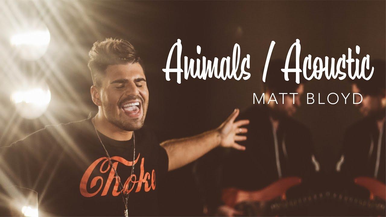 Animals (Acoustic) - Todrick Hall cover by Matt Bloyd