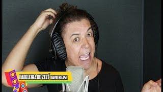 Baixar David Brazil - Olha a Cabeleira do Zezé (CD Pancadão das Marchinhas)