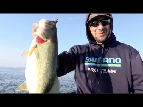 Cayuga Lake: Early Big Fish Action On Day 2 Of Bassmaster Elite
