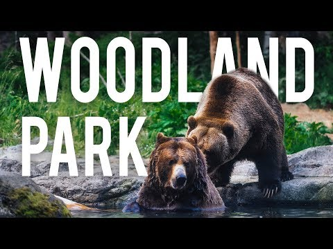 The Best Exhibits At Woodland Park Zoo - Seattle, WA