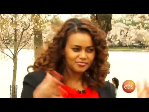 Enchewawot Season 03 Episode 11 | Talk Show