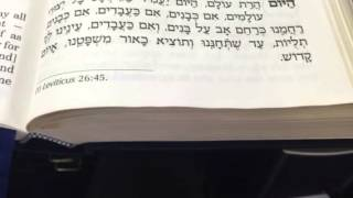 Chazan Nathan Gluck - Hayom Haras Olom