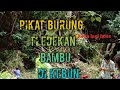 Pikat Burung Tledekan Bambu Di Kebun  Mp3 - Mp4 Download
