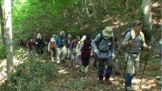 2012年5月27日 「上山高原エコミュージアム」扇ノ山 新緑ハイキング
