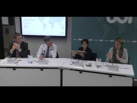 Scrutiny in the age of aid and beyond - Panel Discussion