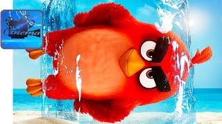 Angry Birds в КИНО 2 [2019] Тизер-Трейлер