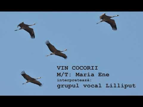 VIN COCORII – Cantece pentru copii in limba romana