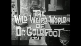 The Wild Weird World of Dr. Goldfoot - Shindig!