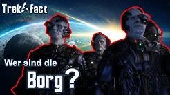Die BORG - eine PSEUDOSPEZIES mit dem Ziel der PERFEKTION :|: Star Trek Fakten