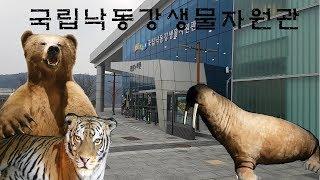 아이와 가볼만한곳 / 상주국립낙동강생물자원관 / 동물 …