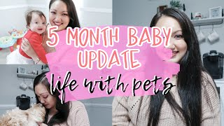 DAY IN THE LIFE OF A STAY AT HOME MOM VLOG | 5 month baby update | How I deal with needy pets |