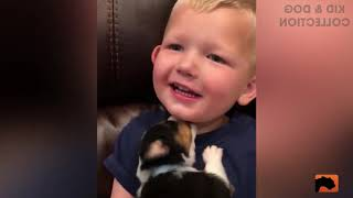 TOP 100 Funny Baby And Puppy Dogs Playing Together - Cute Baby Videos
