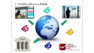 What is forex (Forex คืออะไร ?)