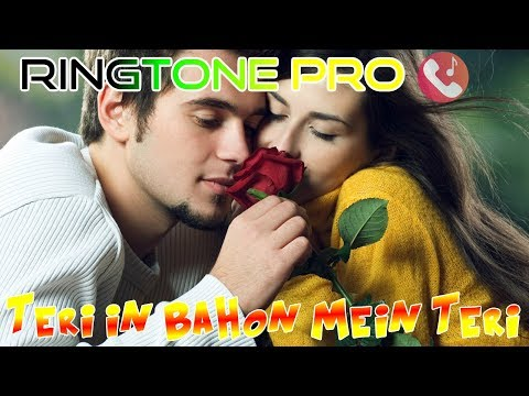 Teri in Bahon Mein Teri Panaho Mein || ROMANTIC COUPLE || New Whatsapp Status || ROMANTIC MUSIC