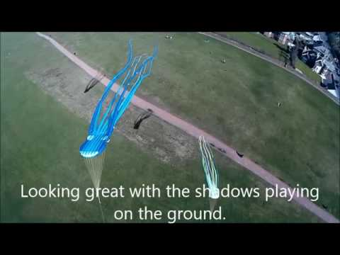 Kite Aerial Photography with the octopi