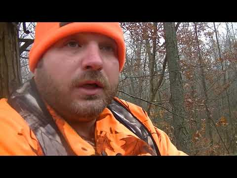 What Has Michigan Hunting Become???