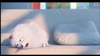 Тайная жизнь домашних животных трейлер