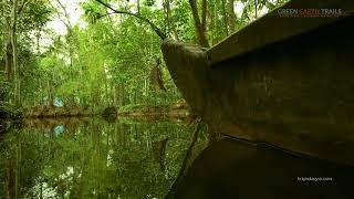 Kerala Village Experience | Kerala Tour Operator | Vaikom Village Country Canoe Cruise