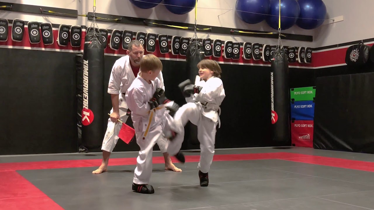 Download Arashi Do Karate Little Dragons (4-7 years old) Class Edmonton
