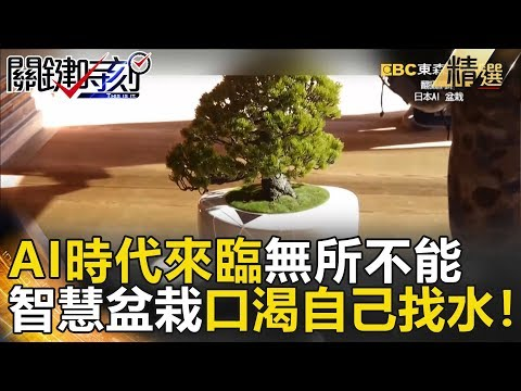 日本出現超智慧「盆栽」 會跟著走、口渴自己找水、還能跟人聊天!!- 關鍵時刻精選 黃創夏 黃世聰 馬西屏 朱學恒 眭澔平