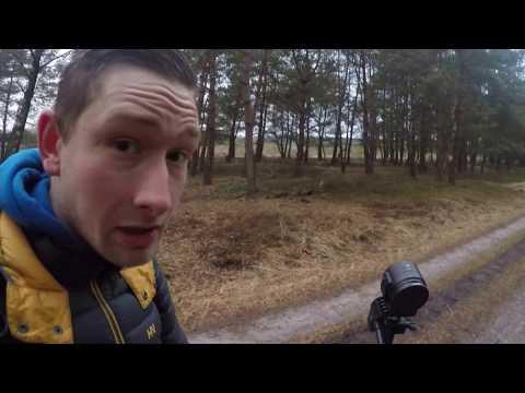 Vlog #1: Herten kijken op de Veluwezoom!
