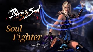 Blade & Soul: Soul Fighter Overview