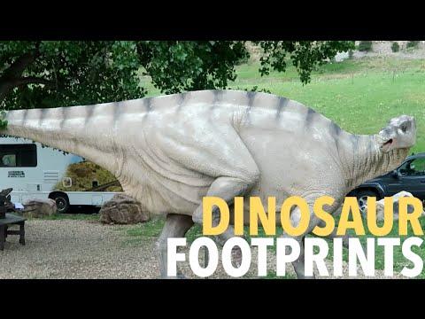 Dinosaur Ridge and millions of years old footprints!!