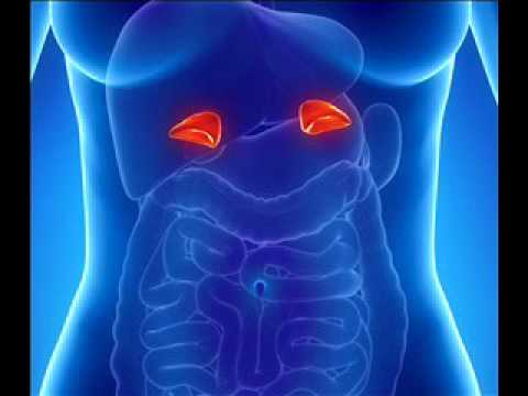 Adrenal fatigue Treatment | Repair | Binaural Beats for Exhaustion Treatment With Isochronic Tones