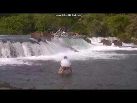 DJ Wizkidd - EPIC Wild Bear Selfie Gone Wrong