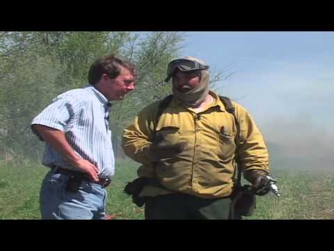 Illinois Stories | Centennial Park Controlled Burn