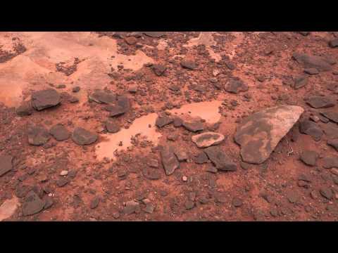 Tuba City Dinosaur Tracks