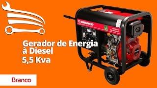 Entrega Técnica Gerador de Energia à Diesel Monofásico 5,5Kva BD6500E BRANCO - Loja do Mecânico