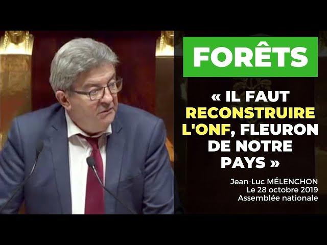 FORÊTS : Il faut reconstruire l'ONF, fleuron de notre pays !